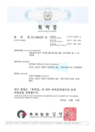 Certificate of Patent RF
